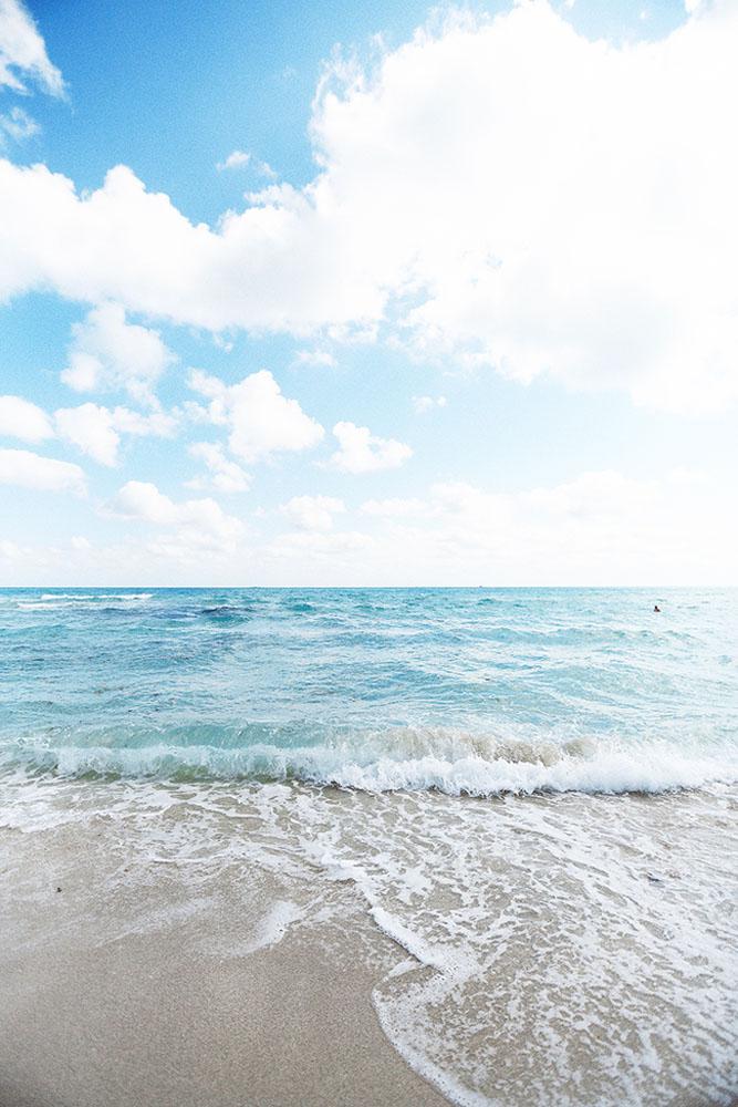 miami ocean 2